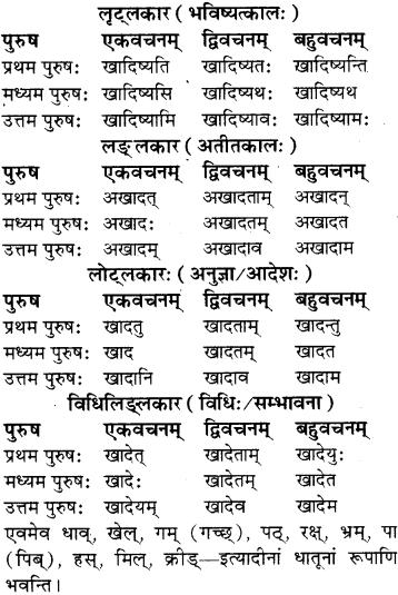 RBSE Class 8 Sanskrit व्याकरण धातु-रूपाणि - 9