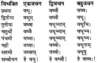 RBSE Class 8 Sanskrit व्याकरण संज्ञा शब्द 1