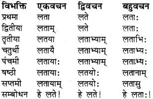 RBSE Class 8 Sanskrit व्याकरण संज्ञा शब्द 11