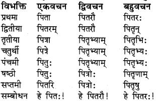 RBSE Class 8 Sanskrit व्याकरण संज्ञा शब्द 12