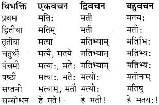 RBSE Class 8 Sanskrit व्याकरण संज्ञा शब्द 13