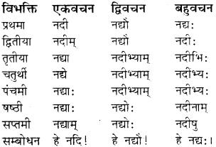 RBSE Class 8 Sanskrit व्याकरण संज्ञा शब्द 14