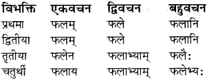 RBSE Class 8 Sanskrit व्याकरण संज्ञा शब्द 16