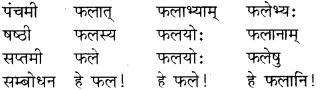 RBSE Class 8 Sanskrit व्याकरण संज्ञा शब्द 17