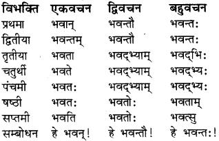 RBSE Class 8 Sanskrit व्याकरण संज्ञा शब्द 3