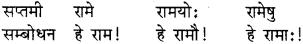 RBSE Class 8 Sanskrit व्याकरण संज्ञा शब्द 5