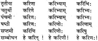 RBSE Class 8 Sanskrit व्याकरण संज्ञा शब्द 9