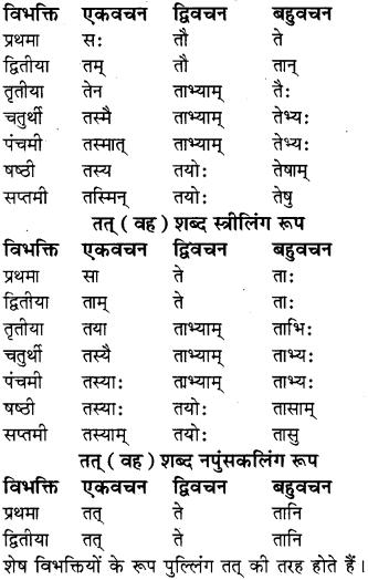 RBSE Class 8 Sanskrit व्याकरण सर्वनाम शब्द 1