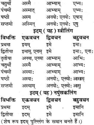RBSE Class 8 Sanskrit व्याकरण सर्वनाम शब्द 10