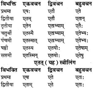 RBSE Class 8 Sanskrit व्याकरण सर्वनाम शब्द 2