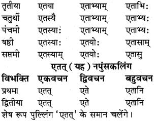 RBSE Class 8 Sanskrit व्याकरण सर्वनाम शब्द 3