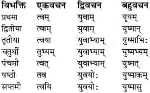 RBSE Class 8 Sanskrit व्याकरण सर्वनाम शब्द 8