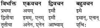 RBSE Class 8 Sanskrit व्याकरण सर्वनाम शब्द 9