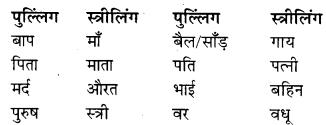 RBSE Class 9 Hindi व्याकरण लिंग 11