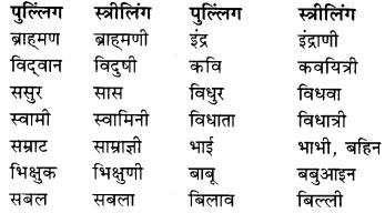 RBSE Class 9 Hindi व्याकरण लिंग 14