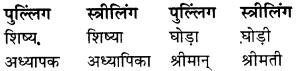 RBSE Class 9 Hindi व्याकरण लिंग 15