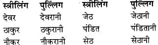 RBSE Class 9 Hindi व्याकरण लिंग 5