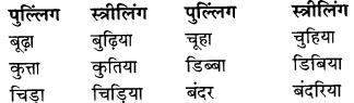 RBSE Class 9 Hindi व्याकरण लिंग 7