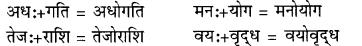 RBSE Class 9 Hindi व्याकरण सन्धि 12