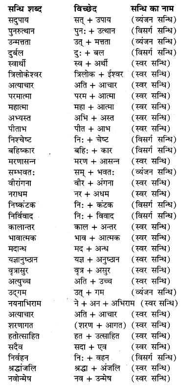 RBSE Class 9 Hindi व्याकरण सन्धि 14