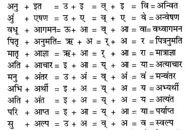 RBSE Class 9 Hindi व्याकरण सन्धि 2