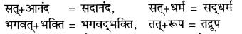 RBSE Class 9 Hindi व्याकरण सन्धि 6