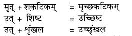RBSE Class 9 Hindi व्याकरण सन्धि 8