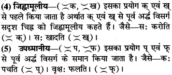 RBSE Class 9 Sanskrit व्याकरण उच्चारणस्थानानि 4