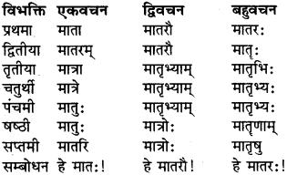 RBSE Class 9 Sanskrit व्याकरण रूप-प्रकरणम् 13