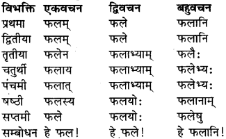 RBSE Class 9 Sanskrit व्याकरण रूप-प्रकरणम् 14