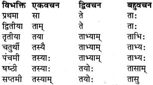 RBSE Class 9 Sanskrit व्याकरण रूप-प्रकरणम् 18