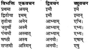 RBSE Class 9 Sanskrit व्याकरण रूप-प्रकरणम् 20