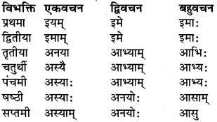 RBSE Class 9 Sanskrit व्याकरण रूप-प्रकरणम् 22