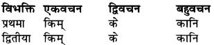 RBSE Class 9 Sanskrit व्याकरण रूप-प्रकरणम् 25