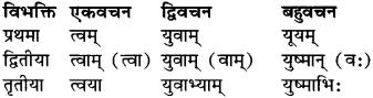 RBSE Class 9 Sanskrit व्याकरण रूप-प्रकरणम् 27