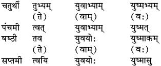 RBSE Class 9 Sanskrit व्याकरण रूप-प्रकरणम् 28