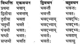 RBSE Class 9 Sanskrit व्याकरण रूप-प्रकरणम् 29