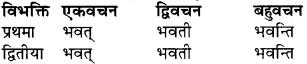 RBSE Class 9 Sanskrit व्याकरण रूप-प्रकरणम् 30