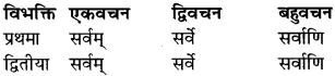 RBSE Class 9 Sanskrit व्याकरण रूप-प्रकरणम् 34