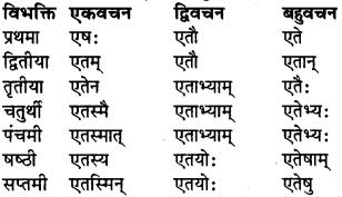 RBSE Class 9 Sanskrit व्याकरण रूप-प्रकरणम् 38