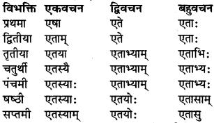 RBSE Class 9 Sanskrit व्याकरण रूप-प्रकरणम् 39