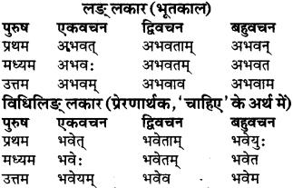 RBSE Class 9 Sanskrit व्याकरण रूप-प्रकरणम् 42