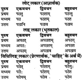 RBSE Class 9 Sanskrit व्याकरण रूप-प्रकरणम् 46