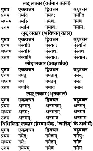 RBSE Class 9 Sanskrit व्याकरण रूप-प्रकरणम् 47