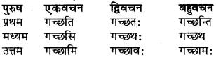 RBSE Class 9 Sanskrit व्याकरण रूप-प्रकरणम् 48