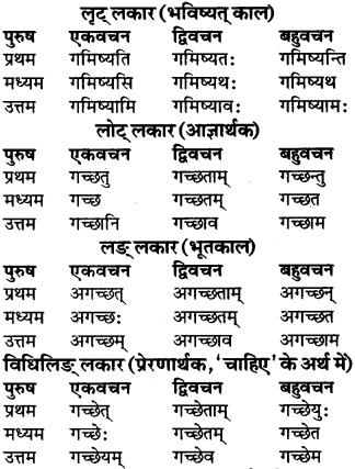 RBSE Class 9 Sanskrit व्याकरण रूप-प्रकरणम् 49