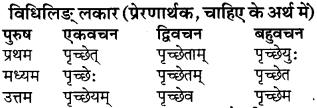 RBSE Class 9 Sanskrit व्याकरण रूप-प्रकरणम् 53