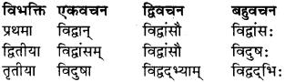 RBSE Class 9 Sanskrit व्याकरण रूप-प्रकरणम् 6