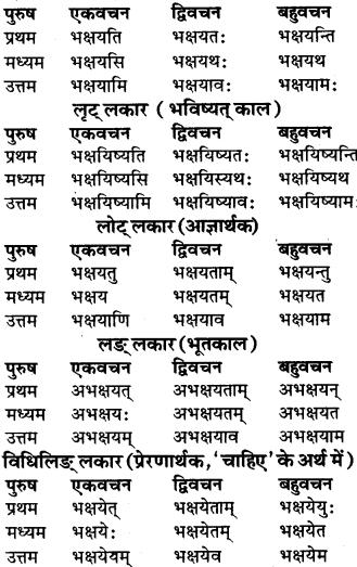 RBSE Class 9 Sanskrit व्याकरण रूप-प्रकरणम् 64