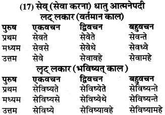 RBSE Class 9 Sanskrit व्याकरण रूप-प्रकरणम् 65